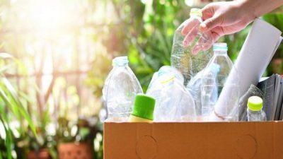 Xu hướng sử dụng túi tự phân hủy trên Thế giới