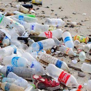 Rác thải chai nhựa đang ảnh hưởng như thế nào đến đời sống