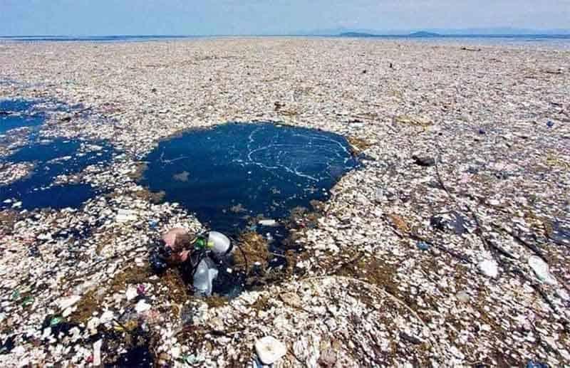 Rác thải nhựa gây ô nhiễm môi trường biển nghiêm trọng