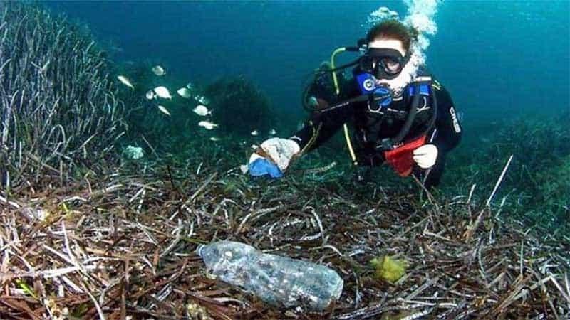 Tại Hội nghị Davos, Thụy Sĩ, các nhà chức trách đã đưa ra nhận định rằng đến năm 2050, lượng rác thải nhựa trên đại dương sẽ cao hơn cả số lượng cá. (Nguồn ảnh: Báo mới)