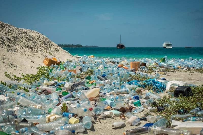 Rác thải nhựa gây thiệt hại về kinh tế và sức khỏe cho cư dân các vùng ven biển
