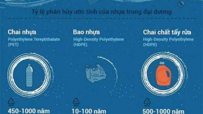 Mất bao lâu để các sản phẩm từ nhựa có thể bị phân hủy? (Nguồn ảnh: khoahoc.tv)