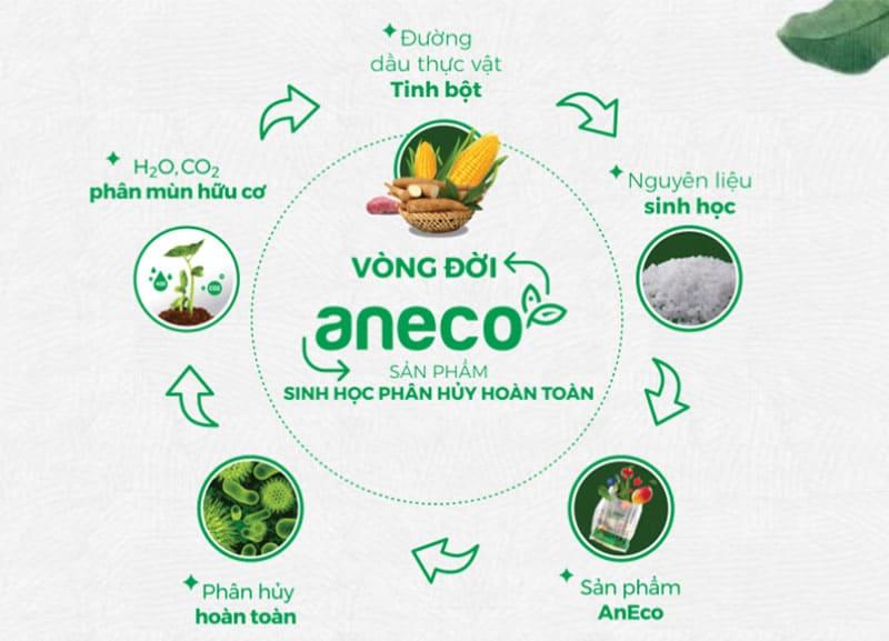 Vòng đời khép kín của các sản phẩm sinh học phân hủy hoàn toàn AnEco